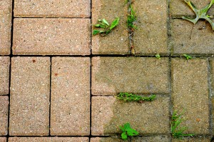 bigstock-Bricks-Scoured-Versus-Grimy-3252538